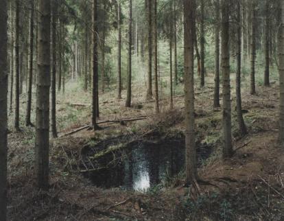 """#41 (Rotterbach und Hacksiefen)"""" aus der Serie """"Bombenkrater"""", © Henning Rogge, Galerie Jo van de Loo"""